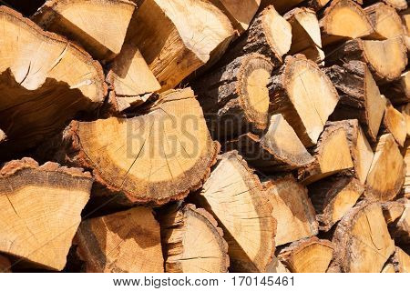 Close Up Shot Of A Bunch Of Chopped Firewood