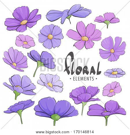 Field of purple flowers on a white background with a place for an inscription