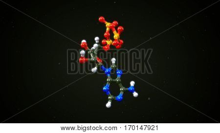 The two most important hormones are tetraiodothyronine (thyroxine or T4) and triiodothyronine (T3). 3D