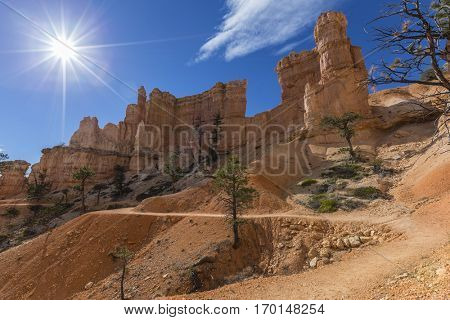 Sunny trail through hoodoos at Bryce Canyon National Park in Southern Utah.