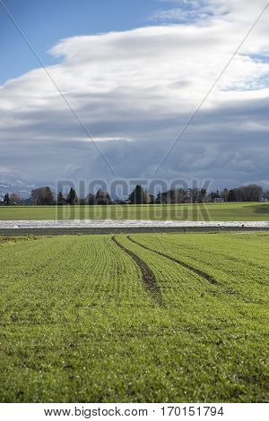 countryside landscape with green field and grey stormy turbulent sky, Switzerland