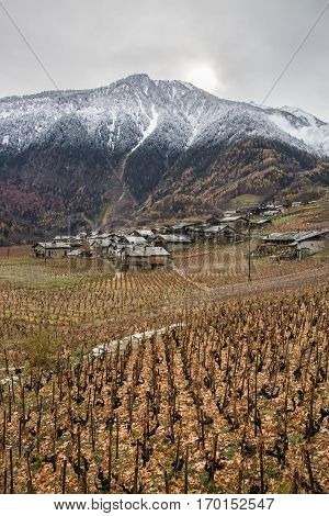 Alpine mountain range landscape near Fully with snowy summits and wineyards, Switzerland