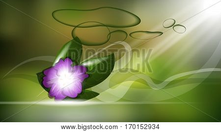 Orchid flower or violet aroma background ads template, droplet mock up isolated on shinny background. Place for brand text. Glamorous fragrance sparkling effects. Vector illustration