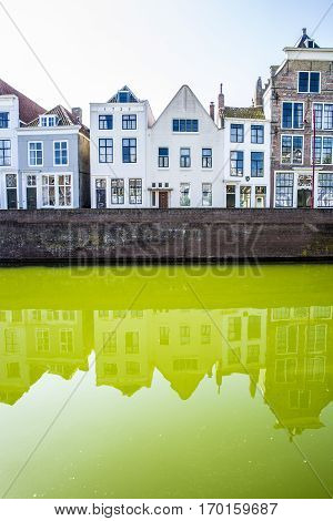 Dutch cityscape with gable houses along a green water canal
