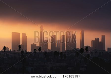 Downtown Los Angeles skyline in foggy / smog morning sunlight. Palm tree in front, skyscrapers in background. Background image. California theme.