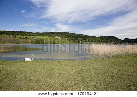 landscape of the Brenet Lake and Jura mountain Le Pont Switzerland