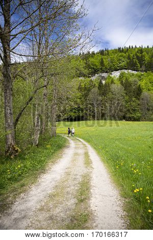 landscape of Jura mountain with blooming green meadow with a path and people wandering, Switzerland