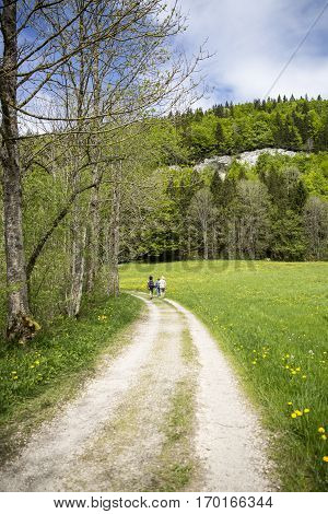 landscape of Jura mountain with blooming green meadow and a path with people wandering, Switzerland