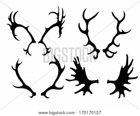Set of silhouettes of deer and elk horns. Vector element for your creativity