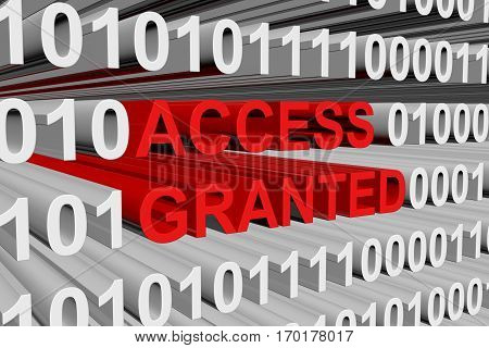 access granted is presented in the form of binary code 3d illustration