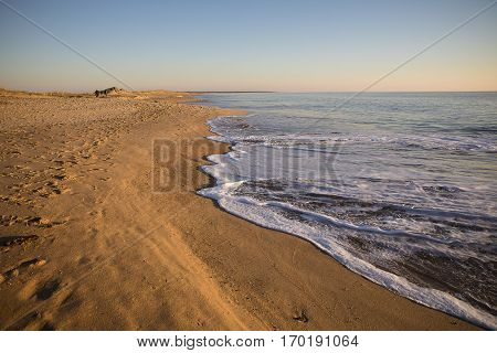 view on a beach at sunset with golden sand and quiet sea