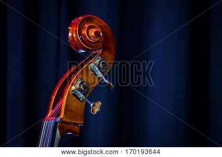 Classical Double-bass Instrument Close-up View