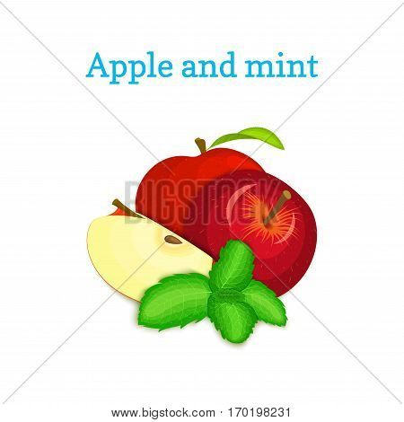 Vector composition of a few red apples and mint leaves. Red apple fruits appetizing looking. Group of tasty ripe apple with pepper mint leaf packaging design of juice, breakfast, healthy vegan food