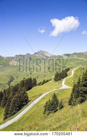 Green alpine landscape in summer view over Swiss Alps mountain massif Canton du Valais Switzerland
