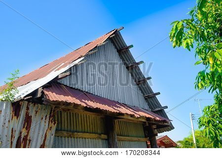 old rusty galvanized sheet (zinc sheet) building with green tree and blue sky.