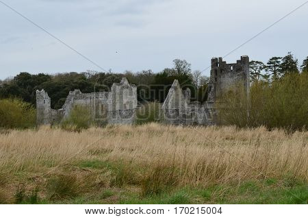 Hay field with the stone ruins of Desmond Castle in Ireland.