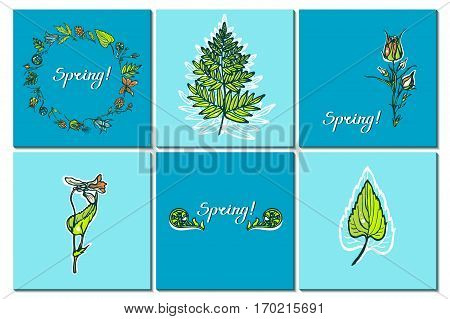 Set cards with wild plants. Congratulations to the spring. Fern, cloudberries, Geum Rivale, bluebells, violets. Hand drawn. Vector illustration.