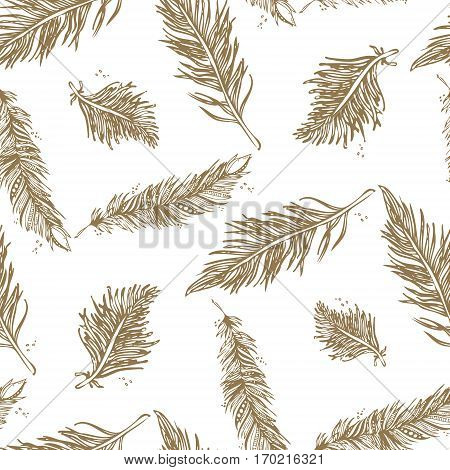 Seamless Pattern With Feathers Beige On A White Background. Vintage Artistically Hand Drawn Stylized