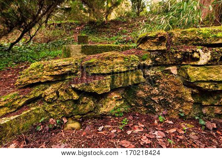 Old stones wall with moss in the park