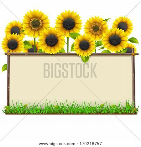 Vector Wooden Frame with Sunflowers isolated on white background