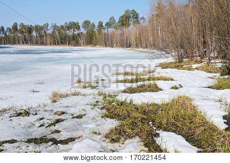 Spring landscape with thawed on the river bank