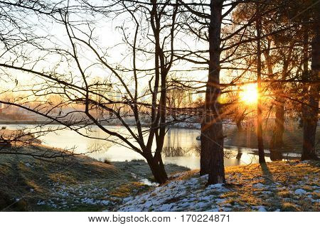 Peaceful morning sunrise through trees and over frosty pond