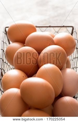 Close Up Of Chicken Wire Tray Filled With Brown Eggs