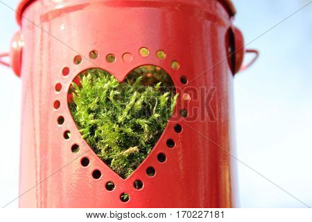 Small red metal bucket filled with fresh moss and round perforations in the form of a heart, in the wind, in the background bright blue sky with white clouds, In the sun in February 2017 in Häselingen