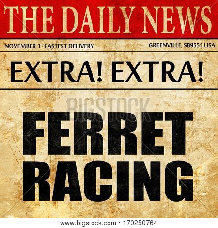 ferret racing, newspaper article text