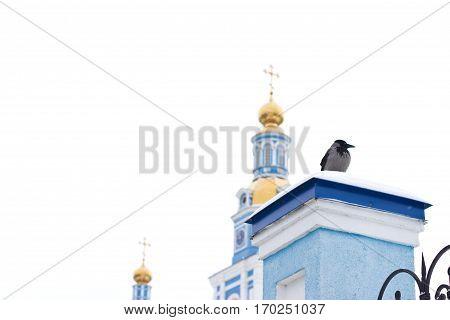Crow Sitting On The Fence Near The Church.