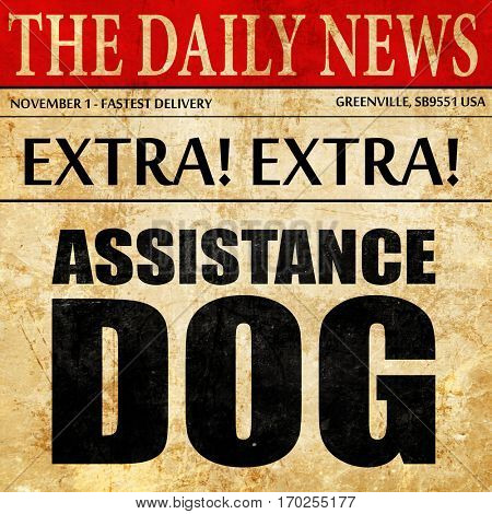 assistance dog, newspaper article text