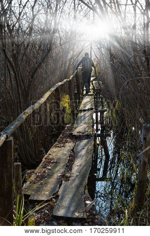 Old wooden bridge in the swamp sunlit. Man with backpack passes hurdle.