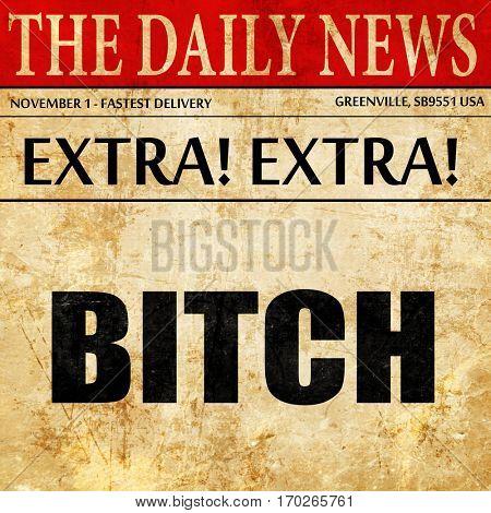 bitch, newspaper article text