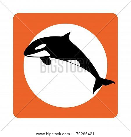square border with whale aquatic animal vector illustration