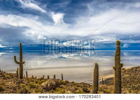 Incahuasi island in Salar de Uyuni Bolivia