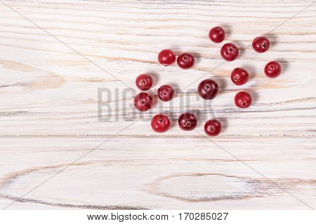 Wild Cranberries Vaccinium Oxycoccus , Top View. Clipping Paths.