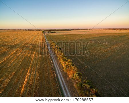 Agricultural fields at sunset aerial view - green and yellow fields