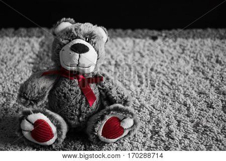 Little Fluffy Soft Teddy Bear Toy sitting on the floor of home