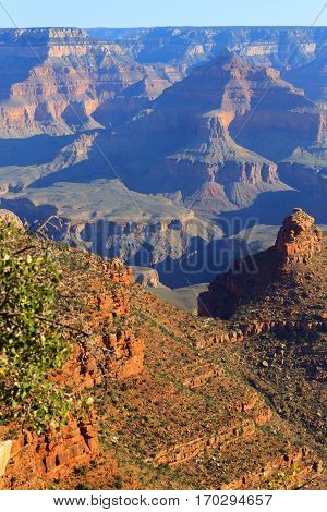 Landscape From Grand Canyon South Rim, Usa