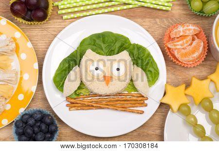 Funny sandwich for kids in a shape of an owl
