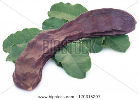 Edible carob fruits with green leaves over white background