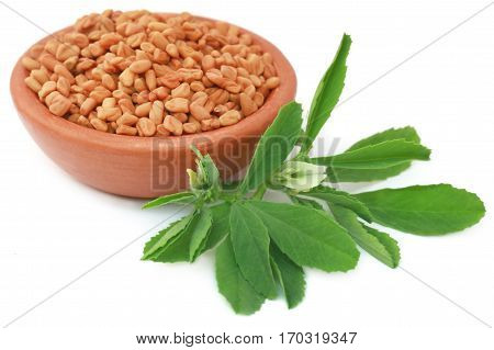 Fenugreek leaves with seeds in a bowl