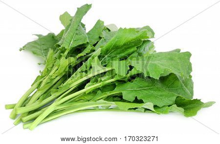 Edible mustard leaves as vegetable over white background