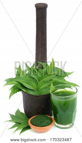 Medicinal neem leaves with extract and ground paste over white background