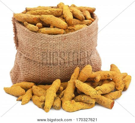 Turmeric in a sack over white background