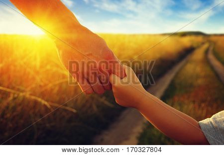 hands of the parent and litlle child in field on road