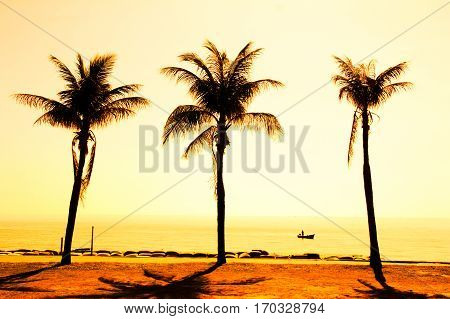 Paradise beach sunset or sunrise with tropical palm trees.