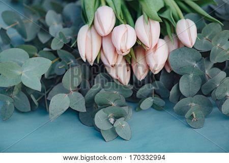 Flower decoration. Fresh pink tulip flowers bouquet on eucalyptus leaves.