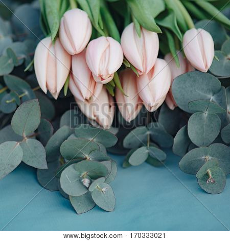 Fresh pink tulip flowers bouquet on eucalyptus leaves, square composition