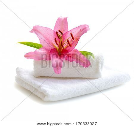 white towels and pink lily flower isolated on white background